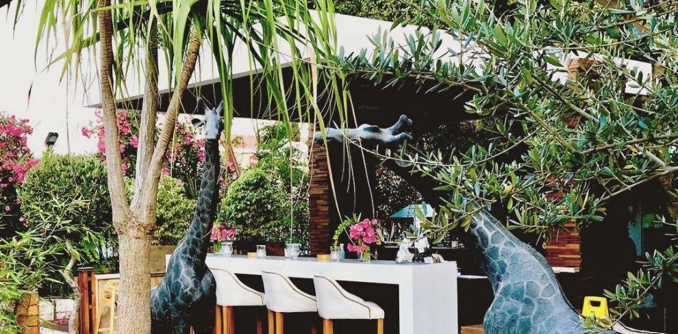 The Garden Restaurant_Παραδεισένιο κήπο_Λεμεσός