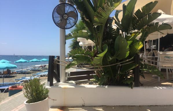 The best beach bar!